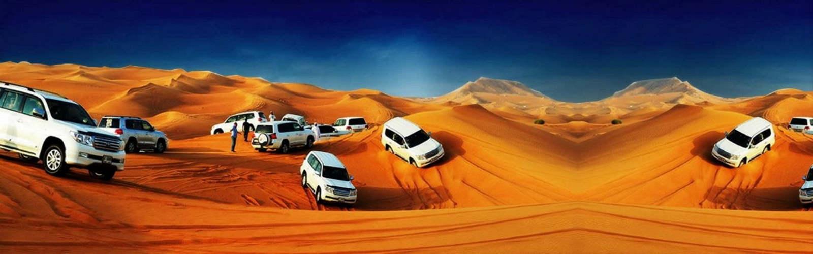 morning desert safaritour